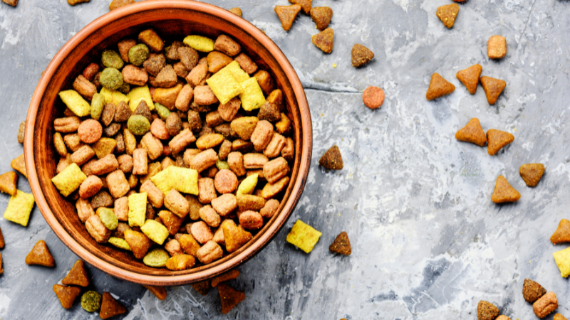 How To Avoid A Diet Of Cat Food In Retirement